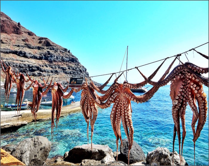 Santorini. pescata